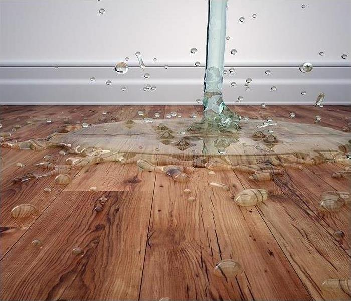 Water Damage SERVPRO of Sumner Counties Water Damage Process Overview