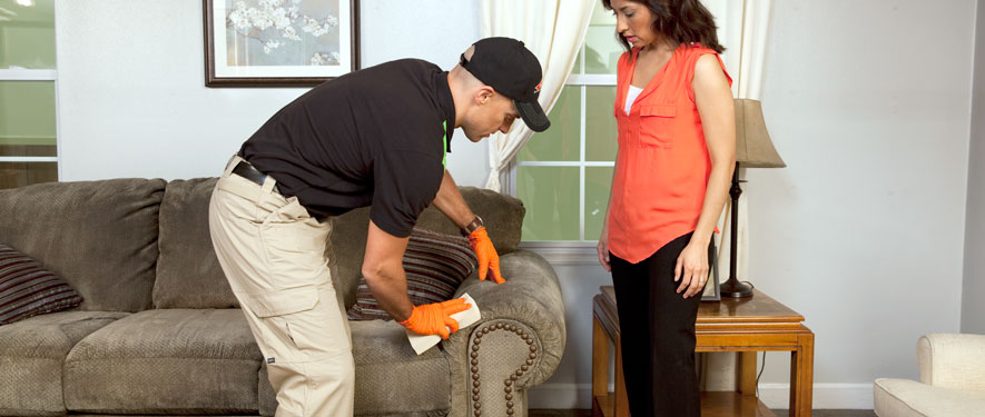 Hendersonville, TN carpet upholstery cleaning