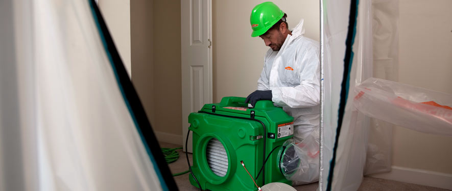 Hendersonville, TN mold cleanup