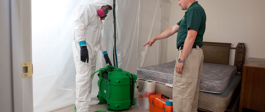 Hendersonville, TN mold removal process